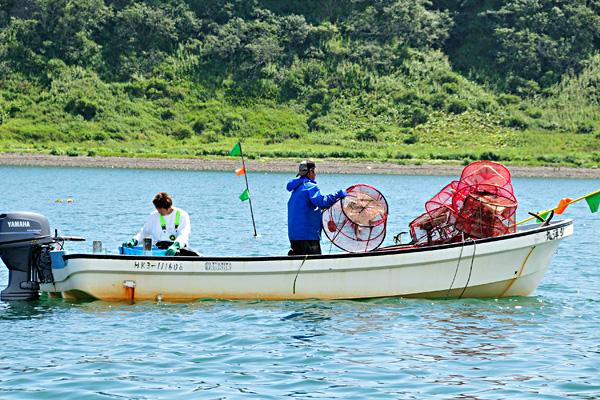 北海シマエビ漁